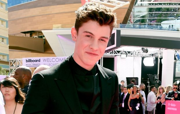 7 Shawn Mendes GIFs to Get You Through the Week